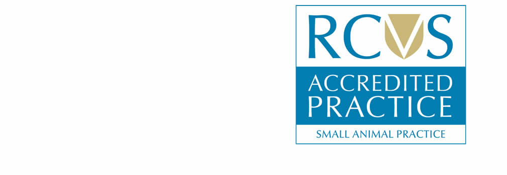 RCVS Accredited small animal practice Johnson and Farrell